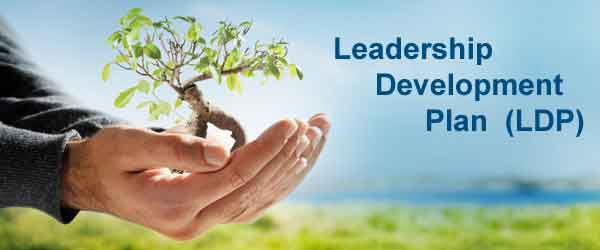 Leadership Development Plan for SMEs