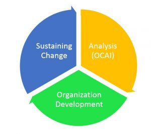 OCAI Organizational Culture methodologies