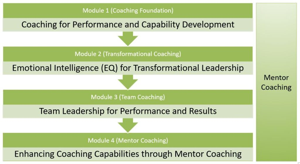 Certified Performance Leadership Coach (CPLC) Certification Program